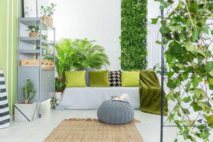 Housses de canapé pour touche décorative